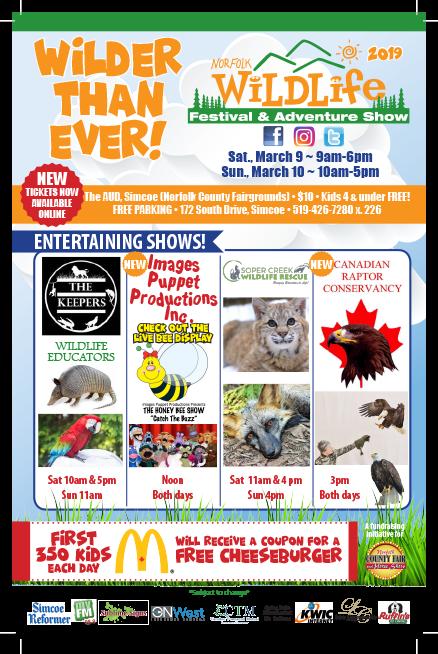 Wildlife Festival Flyer